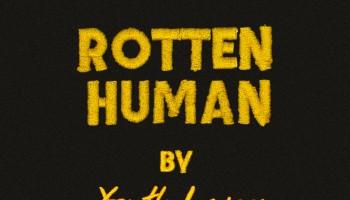 "Youth Lagoon Shares ""Rotten Human"""
