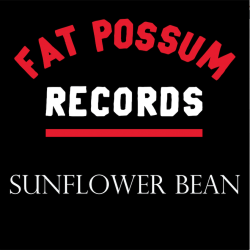 Possum Picks: Sunflower Bean