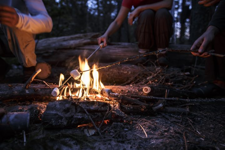Company of friends fries delicious marshmallows on a bonfire