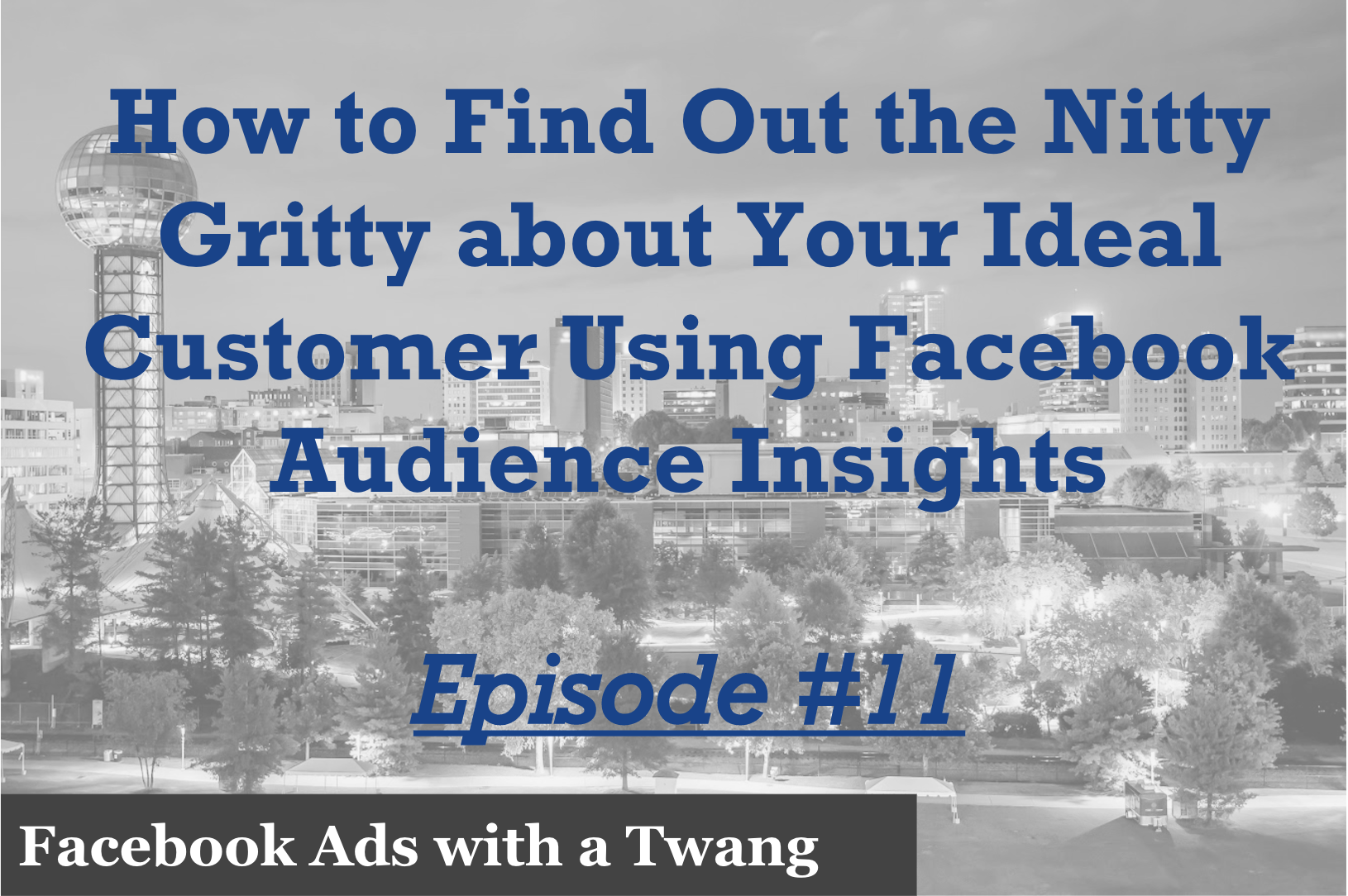 Episode 11 – How to find out the nitty gritty about your ideal customer using Facebook Audience Insights
