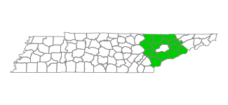 Statistics for East DCS Region, Tennessee