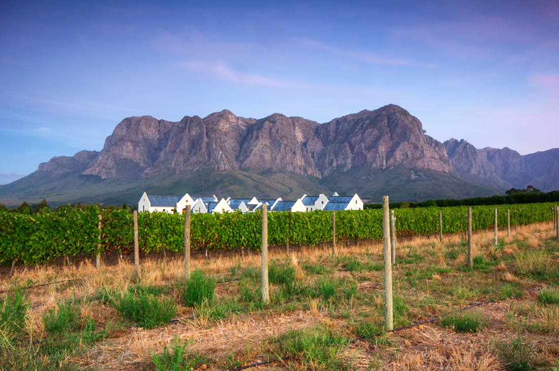 Cape Town & Winelands Highlights Holiday
