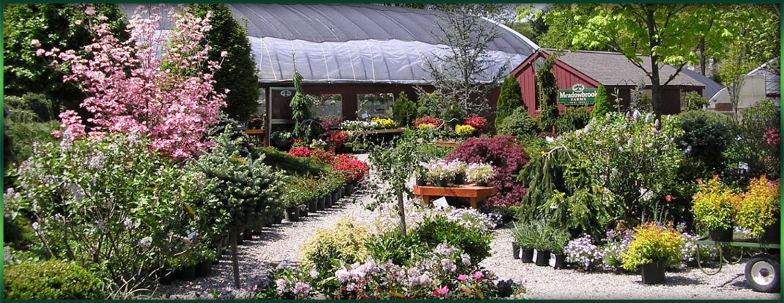 Landscaped Gardens Facility: Garden Center In New Milford CT - Meadowbrook Gardens
