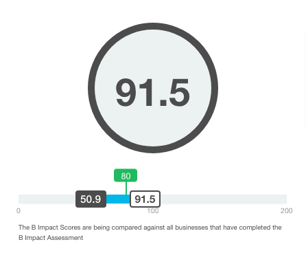 2019-bcorp-score.png?mtime=20190310115610#asset:440953