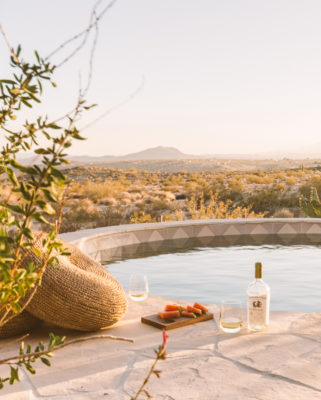 Project Spotlight: The Joshua Tree House Pool