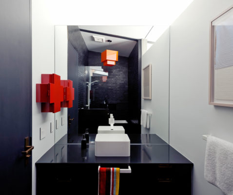 Dramatic and Modern Bathroom