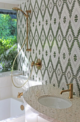 Lush Meets Luxe Double Bathroom Remodel