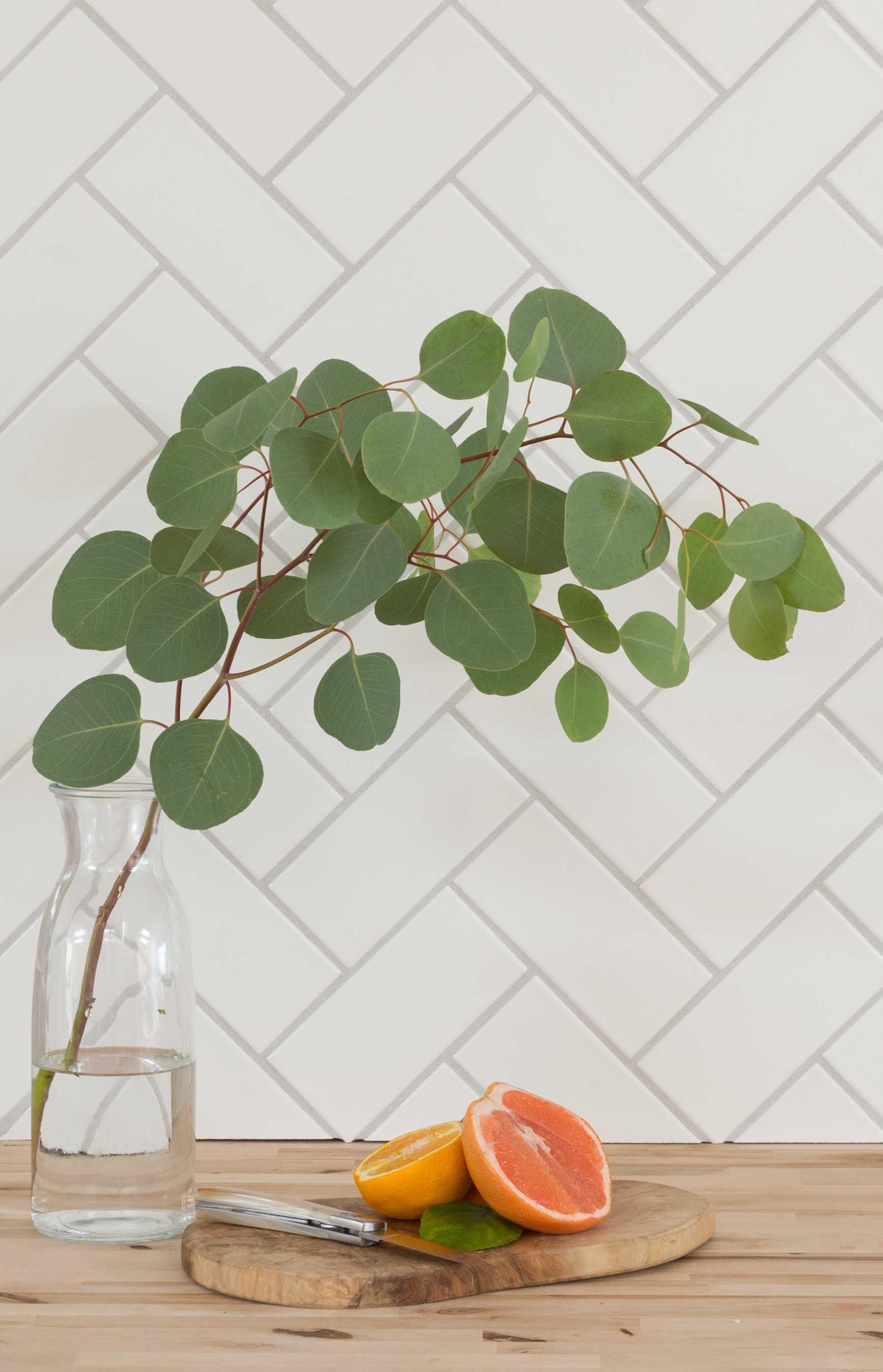 2017_q3_image_scandinavian_summer_calcite_3x6_backsplash_grapefruit_eucalyptus_crop.jpg