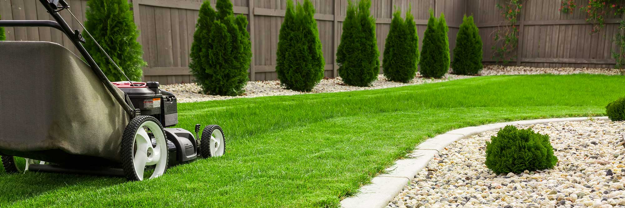 Innovative Lawn Care Solutions