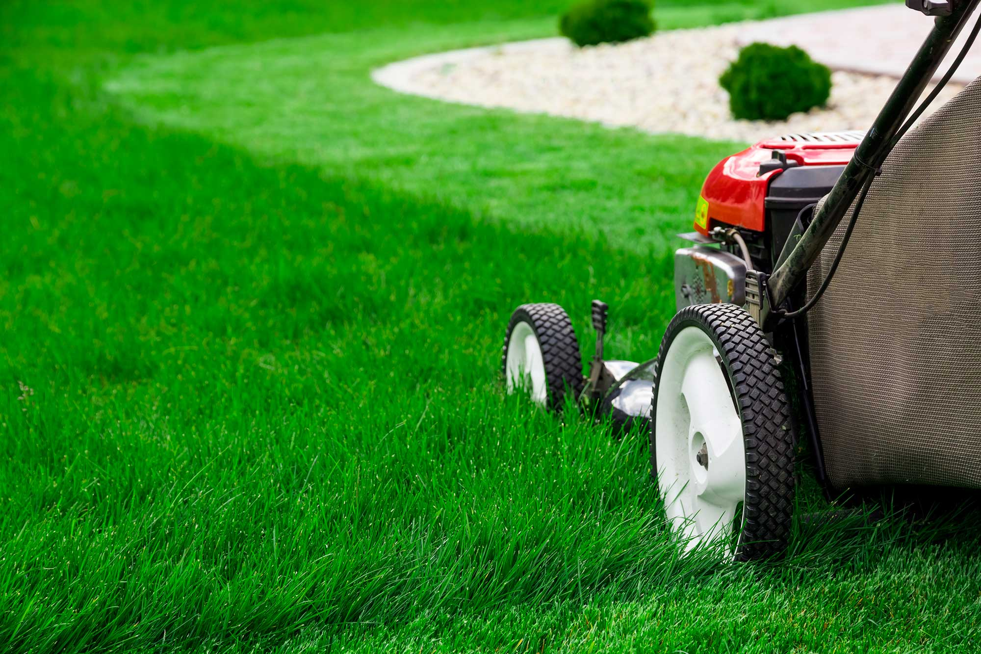 Lawn Mowing & Maintenance