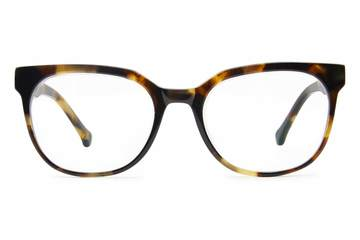Kelvin eyeglasses in whiskey tortoise viewed from front