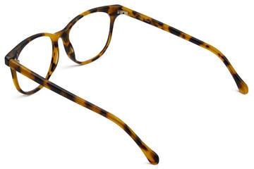 Lovelace eyeglasses in serengeti viewed from rear