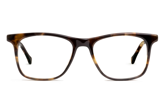 Jemison eyeglasses in whiskey tortoise viewed from front