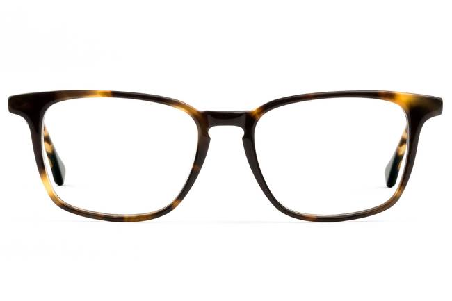 Nash LBF eyeglasses in whiskey tortoise viewed from front