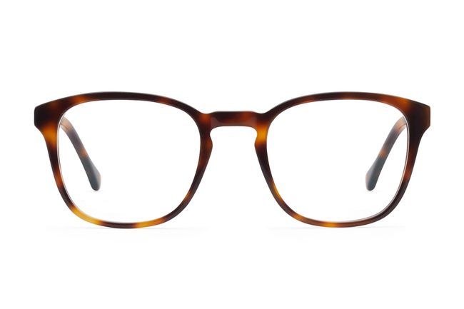 Tole eyeglasses in sazerac viewed from front