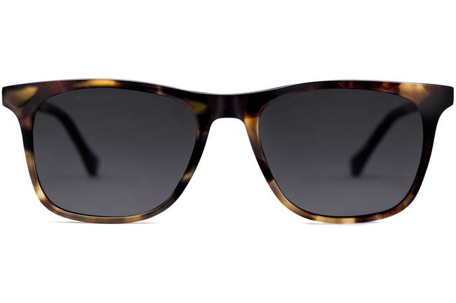Jemison sunglasses in whiskey tortoise viewed from front