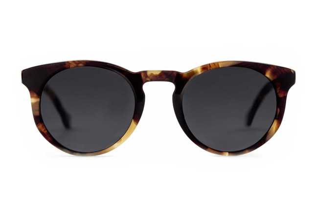 Turing sunglasses in whiskey tortoise viewed from front