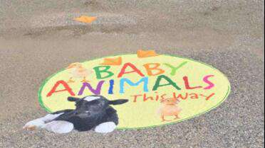 Asphalt Art Sidewalk Graphic Film printed graphic used as way finder. Photo courtesy of Asphalt Art.