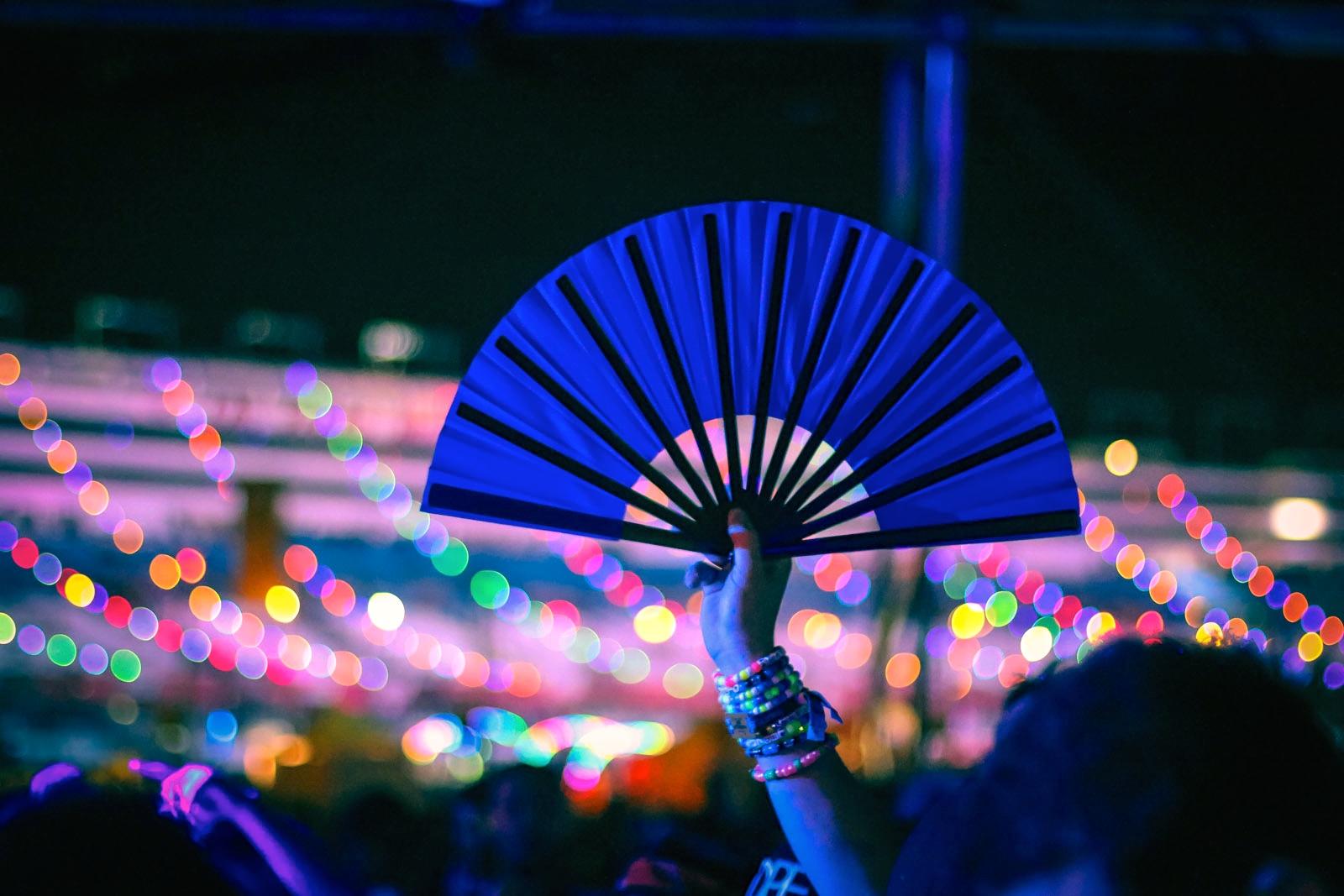 Electric Daisy Carnival 2014 Art Gimbel Totems 14