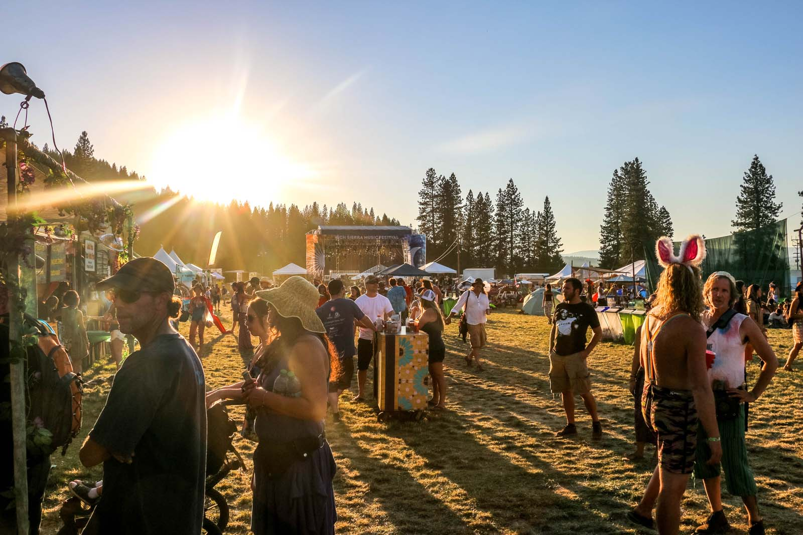 High Serra Music Festival 2014 Art Gimbel 33