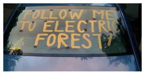 Electric Forest Car