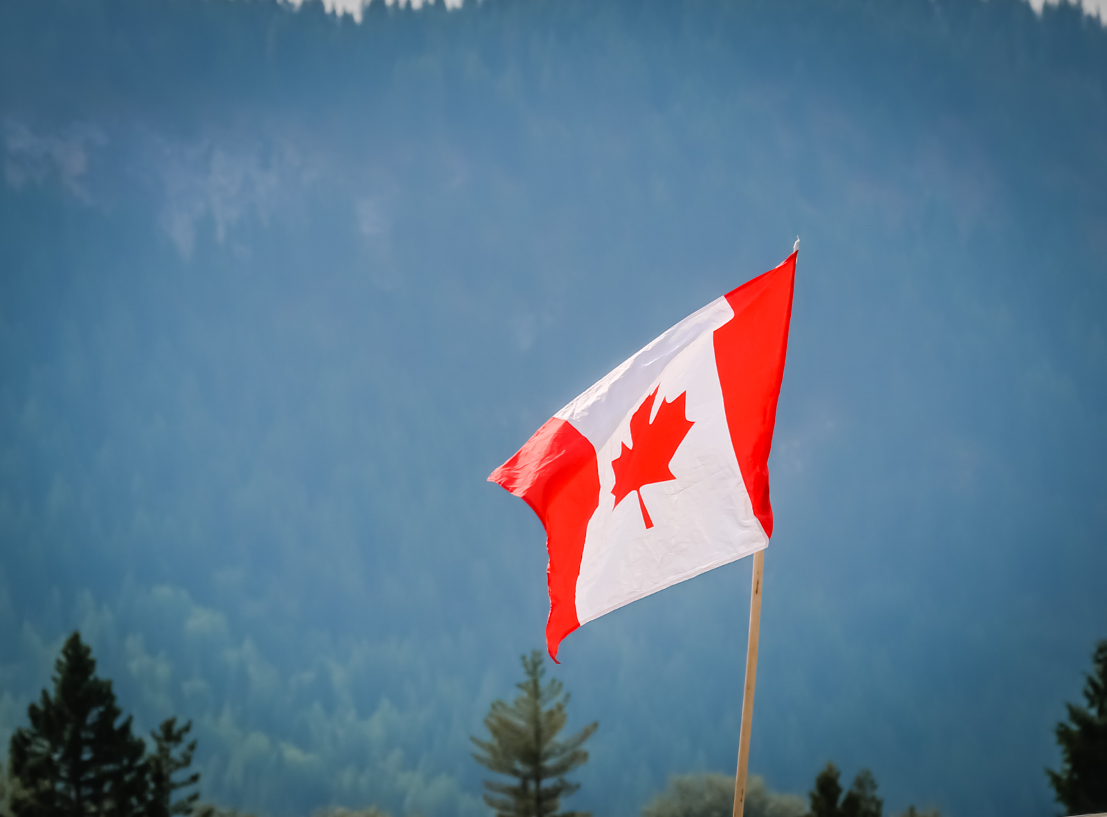 Ask The Festival Lawyer: Can I Travel to Canada with a DUI Prior? | Everfest