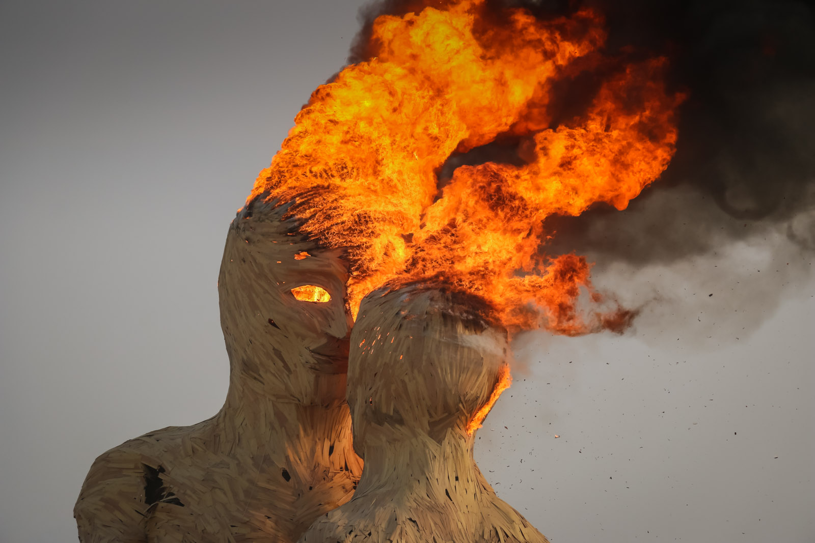 Burning Man 2014 Art Gimbel 13