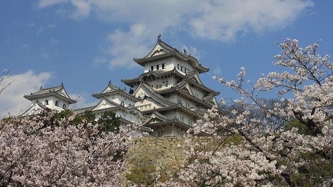 650px-Himeji_cherry_blossoms