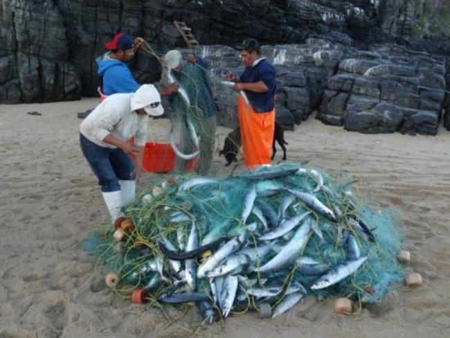 Fishermen_Todos_websize