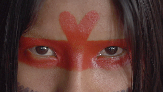 Amazônia Sociedade Anônima