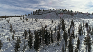 A mountain top covered with snow and trees thumbnail