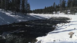 A river flows through snow and trees thumbnail