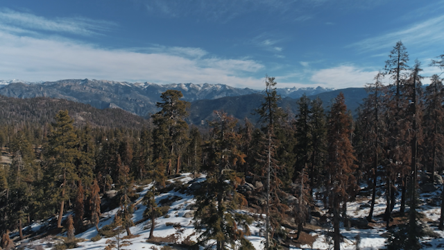 A landscape of forests and mountains thumbnail