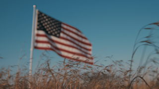 The american flag waving in a golden field at sunset thumbnail