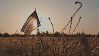 The american flag waving in the wind in a golden field at sunset thumbnail