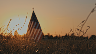 The american flag waves in a golden field at sunset thumbnail