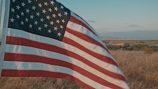 American flag waves in a golden field at sunset thumbnail