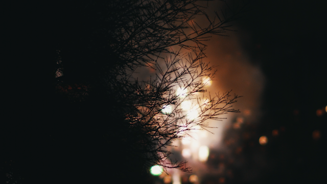 A tree is sihlouetted by sparks and fireworks thumbnail