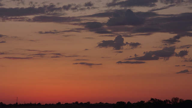 A glowing sunset behind a sihlouette of trees thumbnail