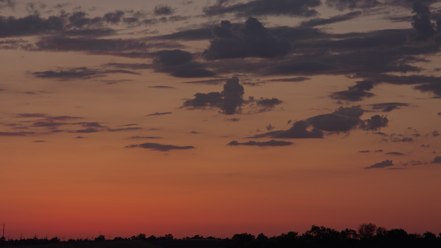 A glowing sunset sky behind a sihlouette of trees thumbnail