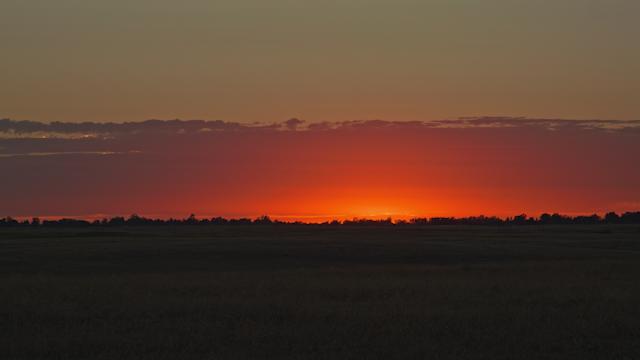 A beautiful sunset illuminates a field landscape thumbnail