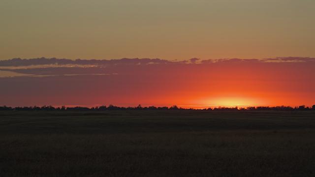 A beautiful sunset illuminates a landscape of fields and trees thumbnail