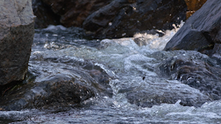 A river is rushing quickly through some rocks thumbnail
