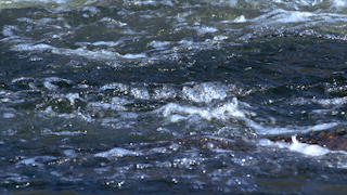 A rushing river thumbnail