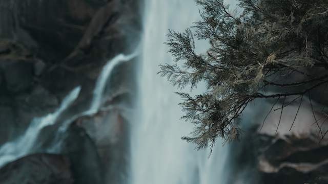 A waterfall flows behind a tree branch thumbnail