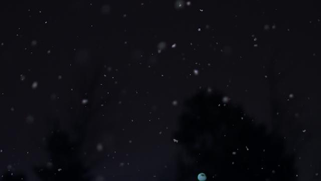 Snow is falling against a dark blue sky thumbnail