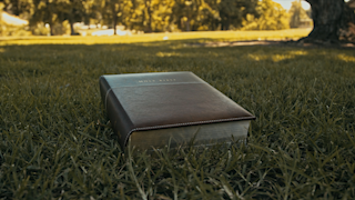 A bible is sitting on the grass in a park thumbnail