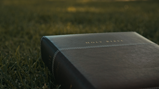 A bible is sitting on grass thumbnail