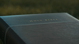 Holy bible sitting on grass in a park thumbnail
