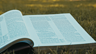 A bible is opened while sitting on grass in a park thumbnail